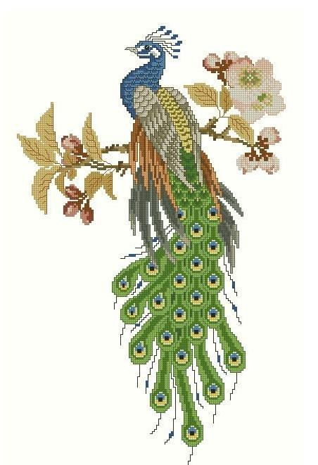 Peacock 2- Cross stitch pattern pdf format,Instant Download