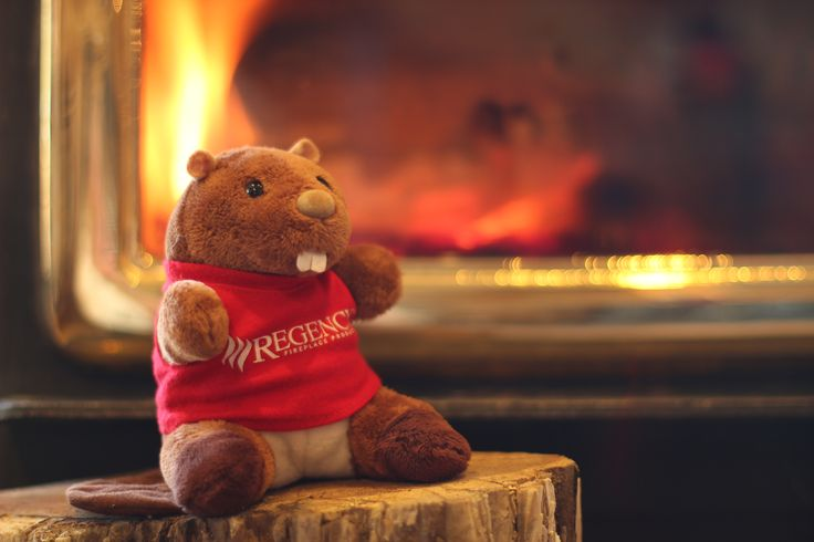 #regencyreggie hanging by the fire on a chilly spring day :) @regencyfire