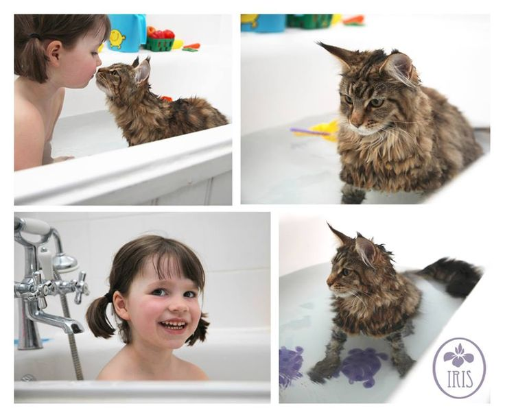 Iris Grace and her cat Thula. Friends sharing a bath