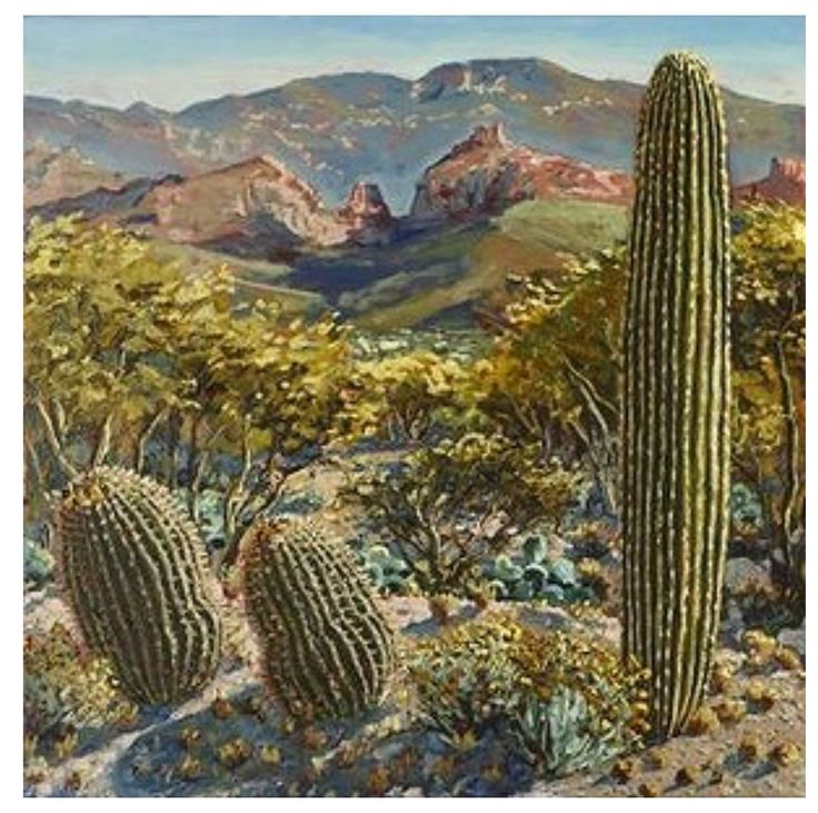 Morning,Alta Vista, Tucson by Lucy Culliton