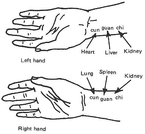 Pulse diagnosis is used to determine the root of what ails you. There are nine pulse positions a Chinese medicine practitioner feels while taking your pulse.