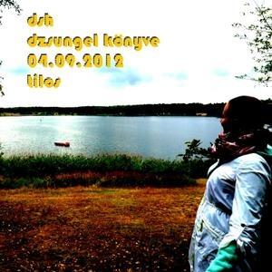 MicroDNB Mix: Dzsungel Könyve @ Tilos - 04.09.2012