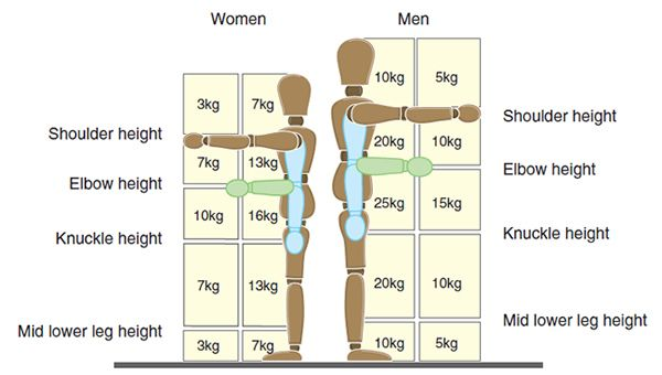 www.health-gossip.com This chart is very important for physiotherapist to prescribe weight lifting mechanics for factory worker for male and female. Always remember the more the weight moves away from pelvic the lesser is the ability to lift for both male and female. Females have less capacity than male. #weight #lifting #ergonomics #back