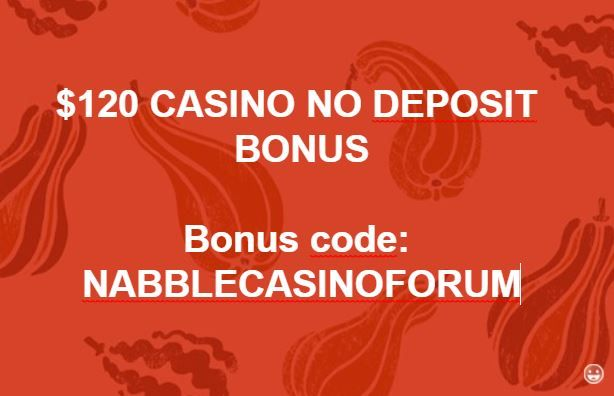 no deposit bonus for wild casino