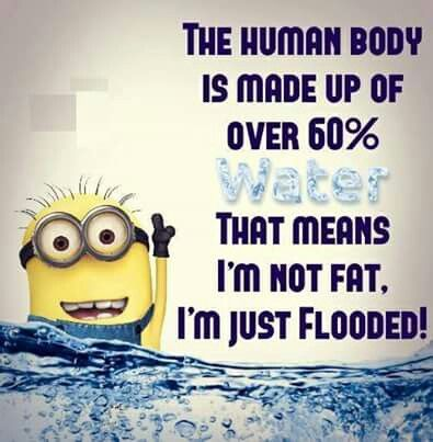 The human body is made up of over 60% water. That means I'm not fat, I'm just flooded! - minion