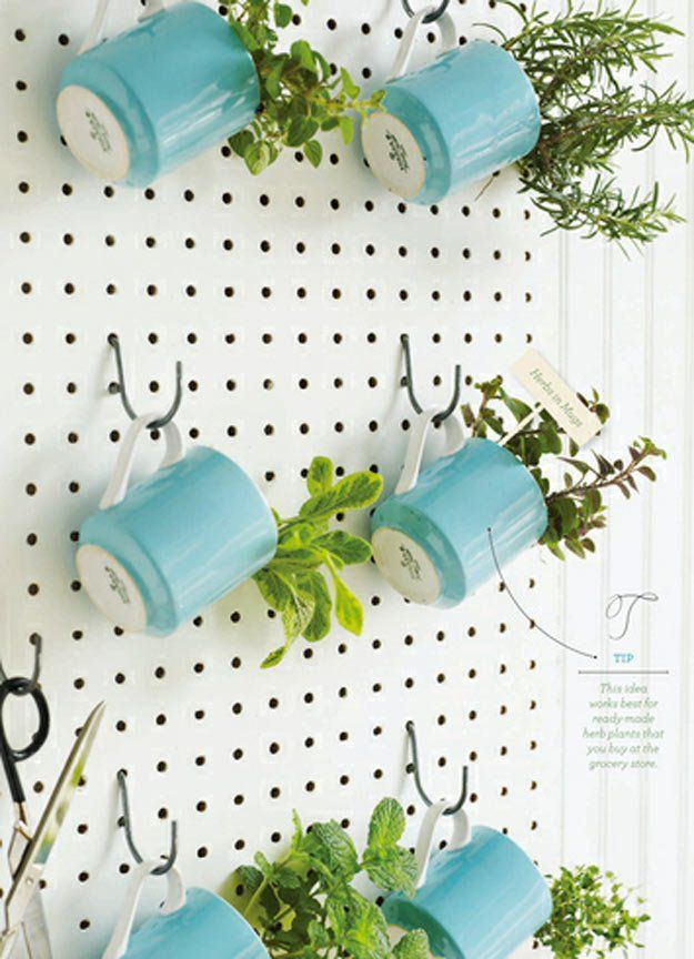 Pegboard Herb Garden  | How To Grow Your Herbs Indoor  - Gardening Tips and Ideas by Pioneer Settler at http://pioneersettler.com/indoor-herb-garden-ideas/