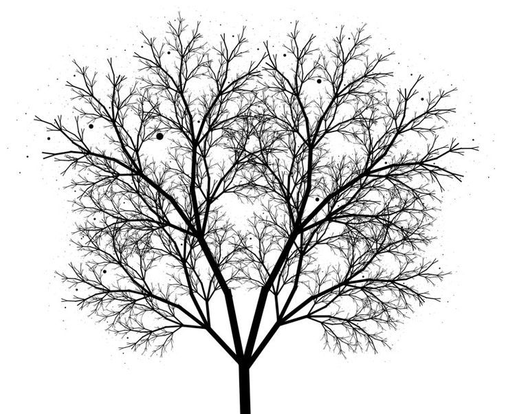 23 best images about patterns both manmade and in nature for Beautiful drawings of trees