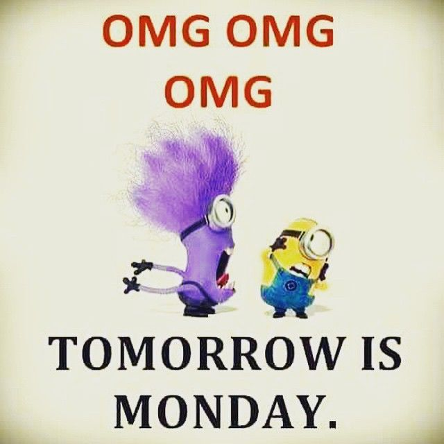 OMG Tomorrows Monday Pictures, Photos, and Images for Facebook, Tumblr, Pinterest, and Twitter