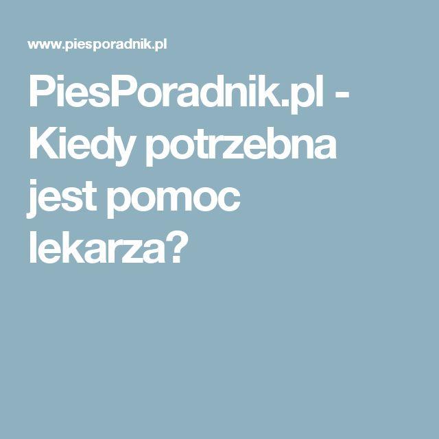 PiesPoradnik.pl - Kiedy potrzebna jest pomoc lekarza?