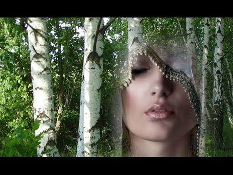 Белая Береза, Дворовые Песни под Гитару, Песни о Любви