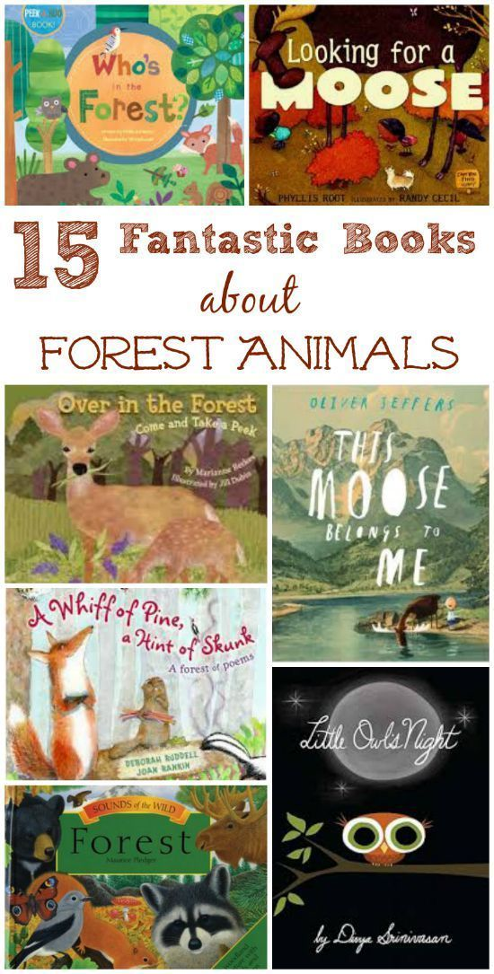 Amazing books about forest animals & life in the woods! Habitats for kids | wildlife science