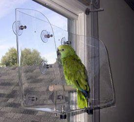 #Posatoio da finestra per #pappagallo.