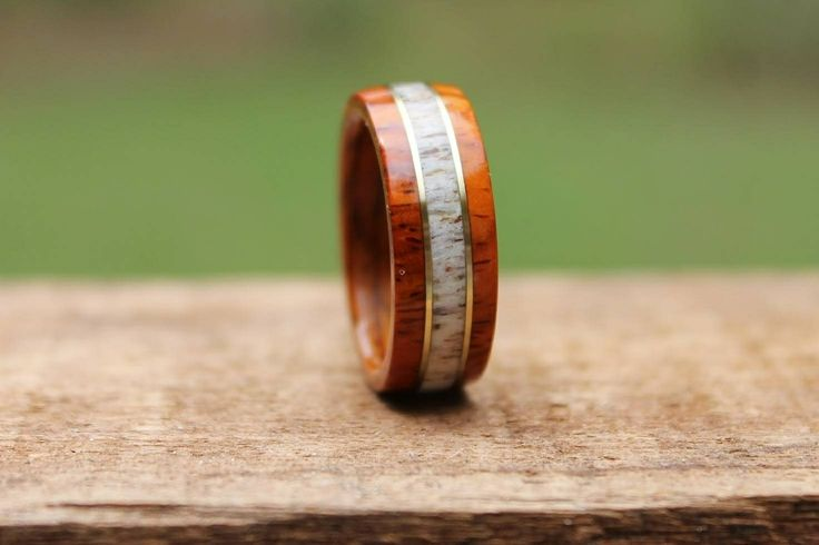 Beautiful Cocobolo & Elk Antler ring with a double Brass Inlay