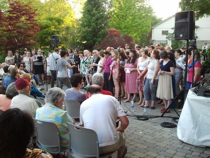 Gardens of Song 2014 - Choir!Choir!Choir!