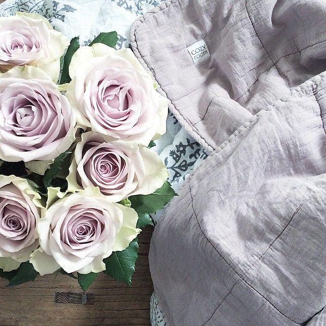 Känner mig fullkomligt hänförd över att det till och med finns rosor som matchar lila men ändå rosa Cozy Room-filtar. Är inte det fantastiskt så säg? #onödigtsnyggt #onodigtsnyggt #webshop #butik #cozyroomdk #cozyroom #designby #snowdropscopenhagen  www.onodigtsnyggt.se