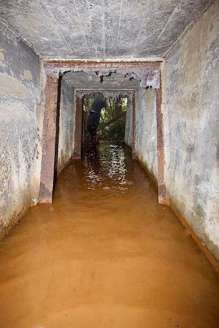 Work at Blackwood included gold mining #Blackwood #Goldfields #Mining #disused #Goldmines #abandoned #mines #adit