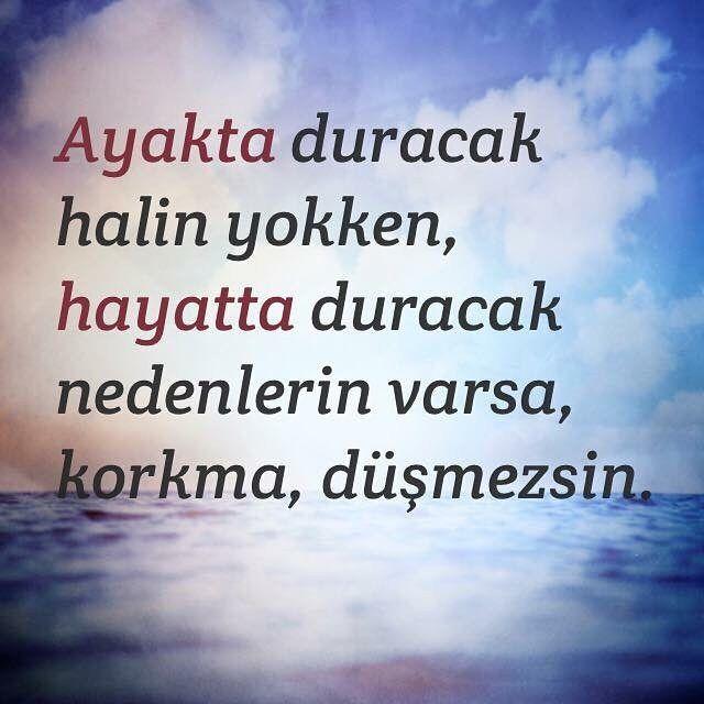 #şiir#kadın#erkek#sebastian#kişiselgelişim#yazar#yaşam#hayat#motivasyon#hayatakarken#caglargulcicegi#anne#spor#psikoloji#istanbul