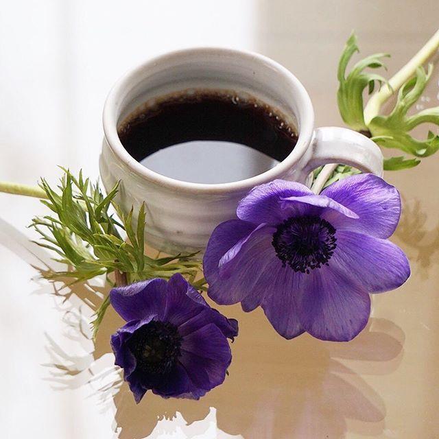 Coffee... Meu gosto é muito simples.................. Gosto muito do melhor em tudo!  (Oscar Wilder) Bom Dia Pessoas Lindas.