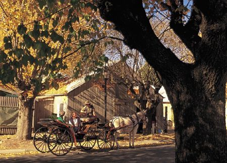 Adelaide Hills Tourist Information South Australia. Hahndorf, horse drawn carriage ride.
