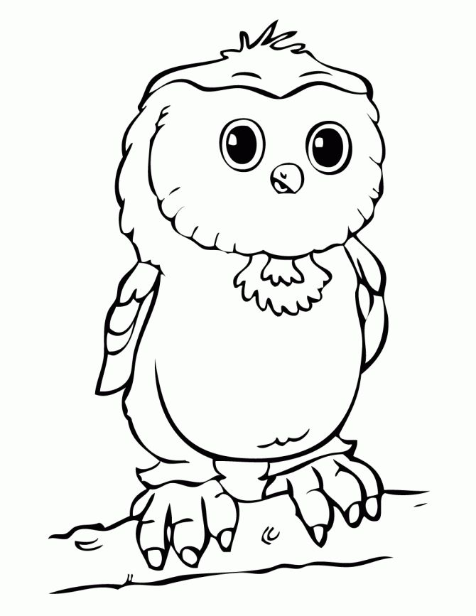 32 best Free Owls to Color / Owl Worksheets - Schoolfy images on ...