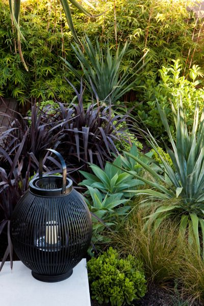 5 ways to revamp your front garden for the ultimate kerb appeal - Reno Addict