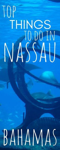 The 14 Best Things to Do in Nassau, Bahamas. The Bahamas Islands are one of the most famous places for that perfect holiday, and as it's capital, Nassau, is one of the best cities in the world to see.  There are so many places to visit in Nassau, both in the water and on dry land, that you will want to visit! Click to see them all!