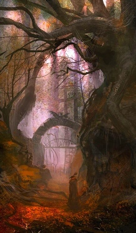 Forest Portal, The Enchanted Wood...