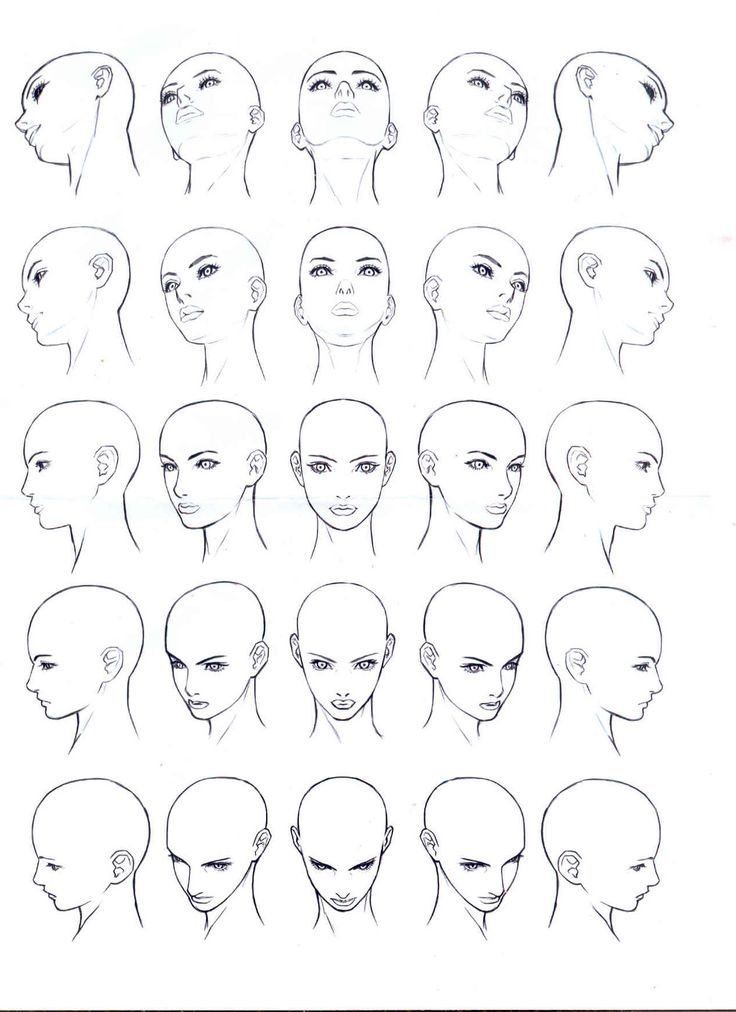 This is the only head reference sheet that actually helps me