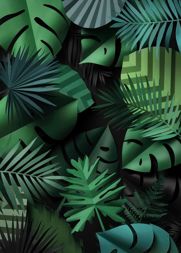 Welcome to the jungle - tropical paper leaves