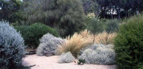 fiona brockhoff garden - Google Search