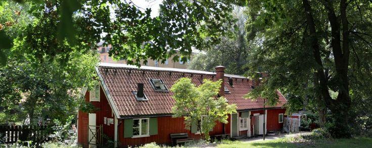 Cafe - Lasse i Parken - Krog & Kafé