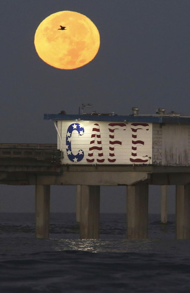 """A """"supermoon"""" sets behind Ocean Beach Pier Monday morning, Nov. 14, 2016, while dozens of photographers got up early to watch. Picture: Peggy Peattie/San Diego Union-Tribune via AP"""