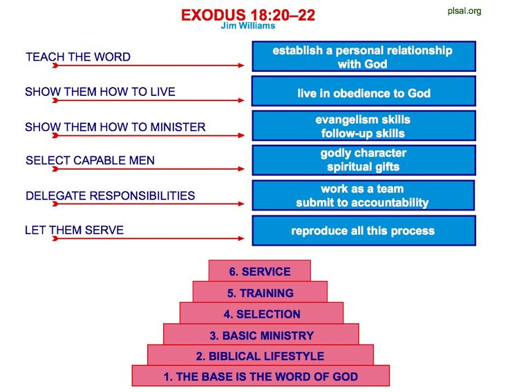 The Basic Steps of Disciplemaking