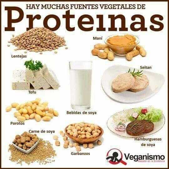 Fuentes vegetales de proteínas