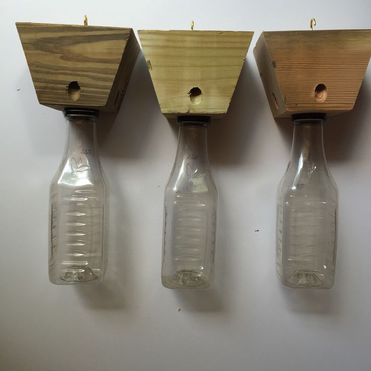 Carpenter Bee Trap Wood By TNTWoodWorkshop