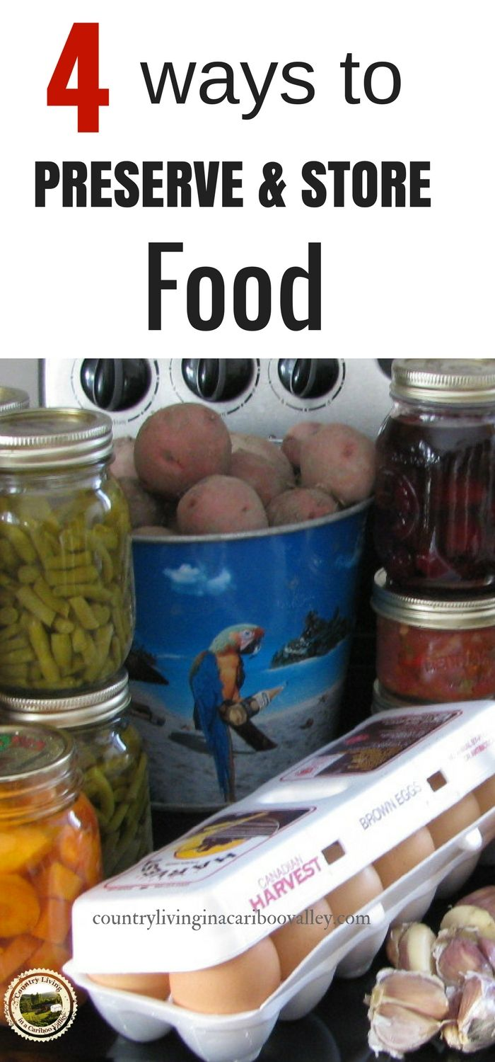 4 Ways to Preserve & Store your food. Save money, eat healthy #canning #gardening #food