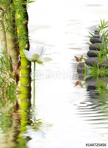 composition zen, bambou à noeud,lotus blanc, galets et papillon