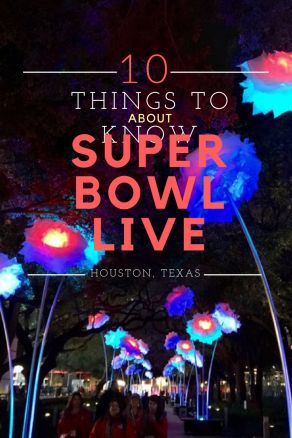 Super Bowl Live Volunteer and Visitor Tips for Houston Super Bowl 2017  Super Bowl Houston Discovery Green Visit Houston Things to Do in Houston