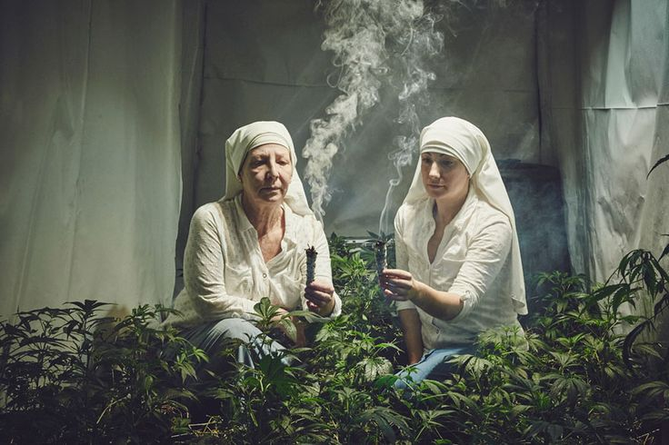 Being a nun isn't for everyone. It takes discipline, dedication, empathy and patience. It also, on occasion, takes a Godlike knowledge of marijuana horticulture. Bet they never told you that at Bible Camp.