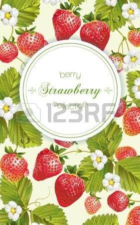 vintage jam: Vector strawberry verticale banner. Ontwerp voor thee, natuurlijke cosmetica, beauty winkel, dessert menu, biologische producten voor de gezondheidszorg, parfum, aromatherapie. Met plaats voor tekst