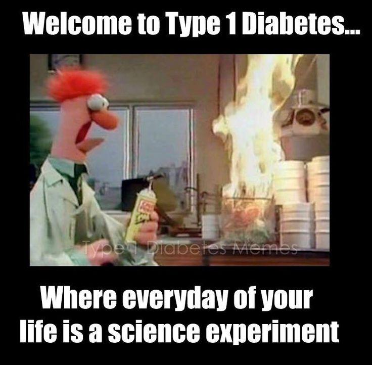 Type 1 Diabetes Memes : Photo