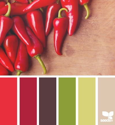 Choose Your Best Feng Shui Kitchen Colors Design Kitchen Colors And Kitchens