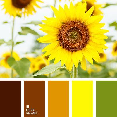 грязно-коричневый, желтый, зеленый, насыщенный оранжевый, оттенки оранжевого, подбор цвета для дома, темно-оранжевый, теплые оттенки, теплый желтый, теплый оранжевый, цвет листьев, цвета Италии.