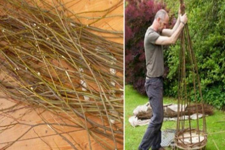 A szomszédom vágott néhány fűzfa ágat, nem hittem a szememnek, mikor megláttam mit készített belőlük!