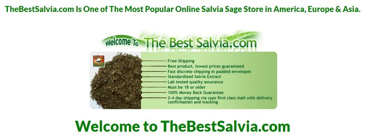 When a person is in doubt, he or she faces many difficulties. It becomes very tough to make even simple decisions. This thing applies best to finding and buying Salvia online.