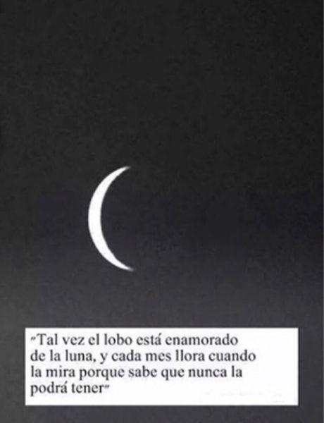 Todos somos un lobo y tenemos nuestro amor imposible, la luna