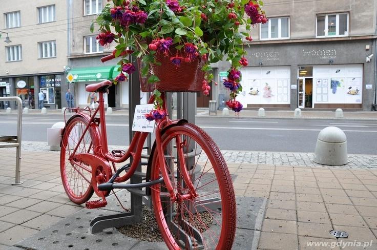 Gdyńskie pozytywne rowery nabrały kolorów / Positive bicycles of Gdynia have taken some colours | fot. Dorota Nelke | #rower #bike #gdynia