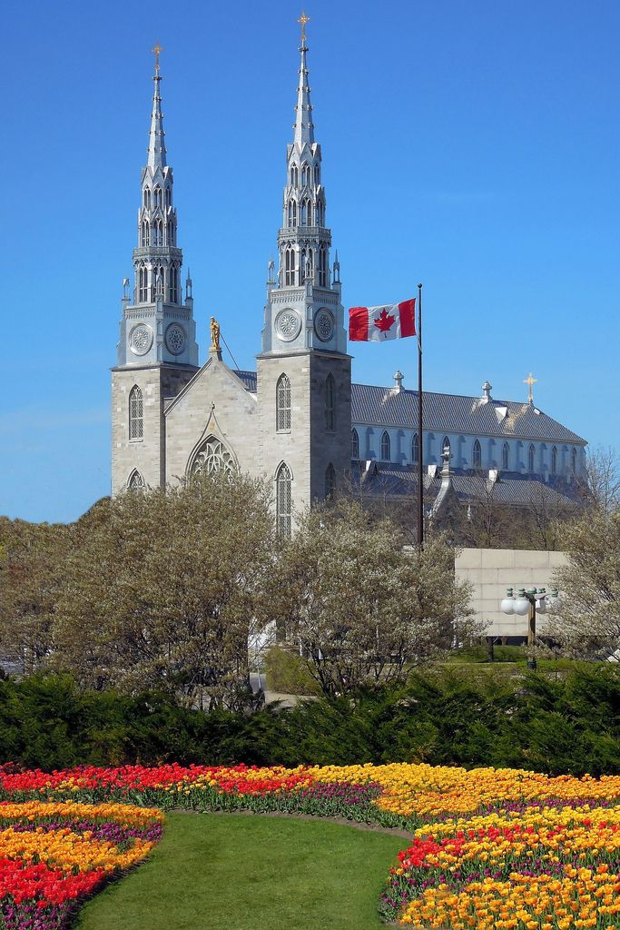 Notre Dame Cathedral, Ottawa, Canada...potential wedding venue