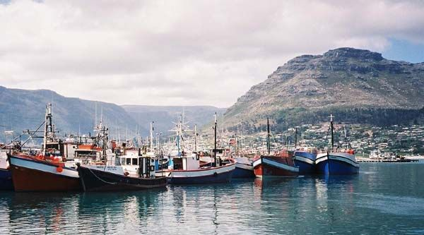 Hout Bay is one of the busiest harbours in the Western Cape, with a well-established tuna, snoek and crayfish industry. Visitors will be taken aback by the scenery, the friendly people and the laid-back ambience.