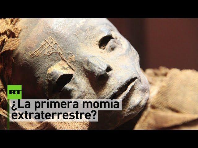 """¿La primera momia extraterrestre? El portal dedicado a información científica Gaia informa del hallazgo de un cuerpo momificado que, según las primeras investigaciones, presenta """"la posibilidad de  un material distinto a cualquier otro encontrado hasta ahora en un fósil"""". Según el medio, la momia fue descubierta la primavera de este año cerca de la ciudad peruana de Nazca."""